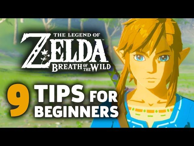breath of the wild beginner guide