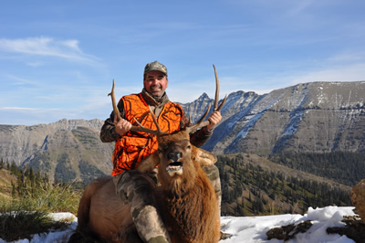 guided elk hunting trips in montana