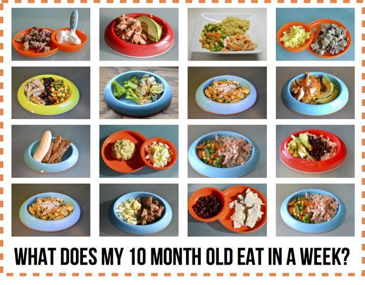 heinz baby food guide chart australia