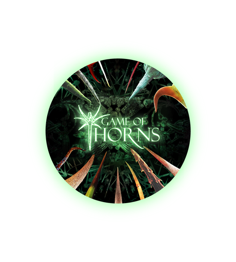 hero point guide heart of thorns