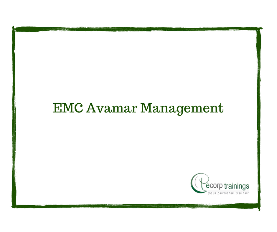 emc avamar installation and configuration student guide