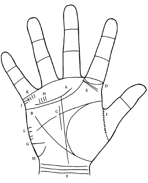 palm reading guide with pictures pdf