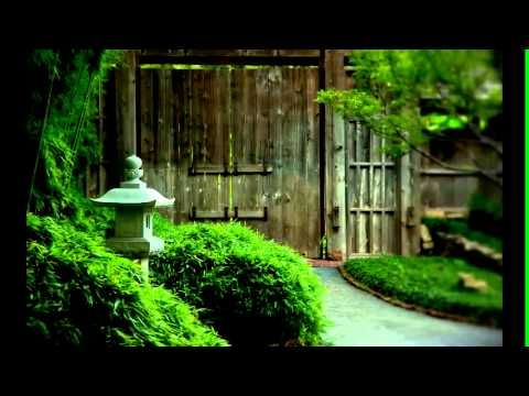 guided meditation for stress relief.wmv