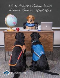 guide dogs tasmania annual report