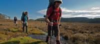 cradle mountain book trek guide download