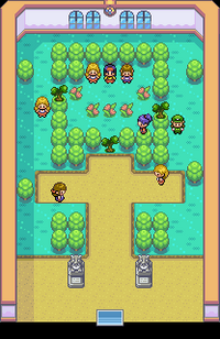 pokemon revolution guide to beat johto elite four