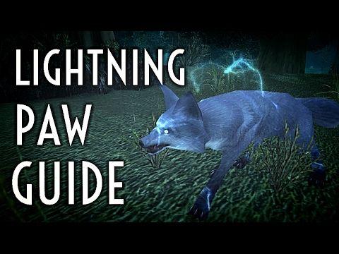 wow hunter horde pets guide